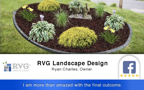 4-Review RVG